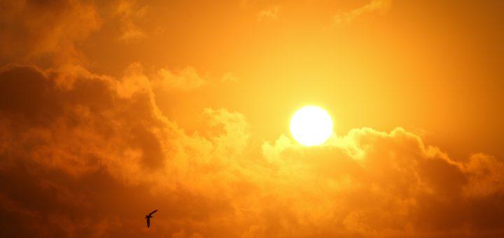Sonnette solaire